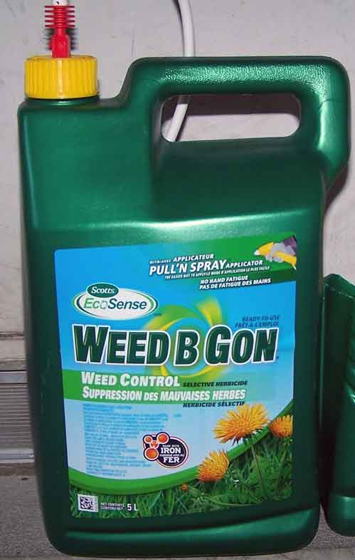 iron based weed control